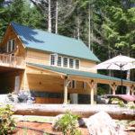 Forest Retreat at Mt Rainier