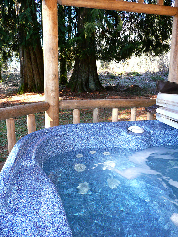 Private hot tub tucked under a grove of old cedars