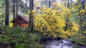 Lush property at Copper Creek
