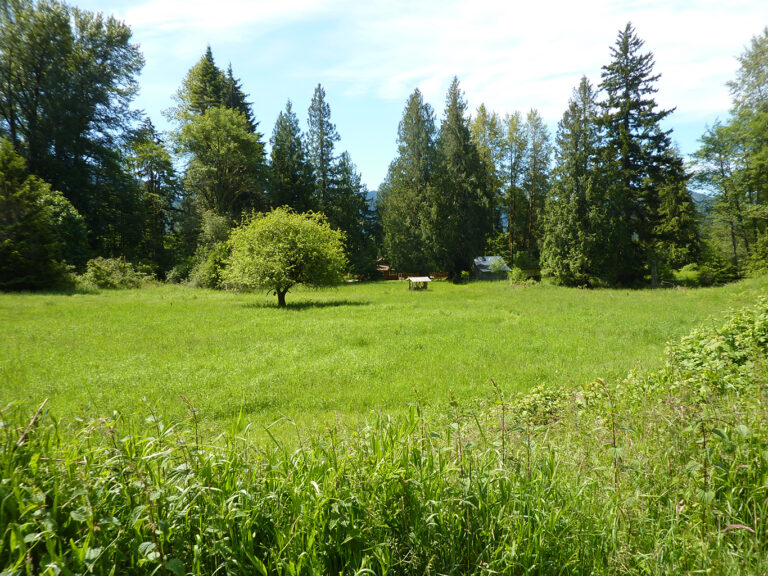 Acres of pasture surround the home.