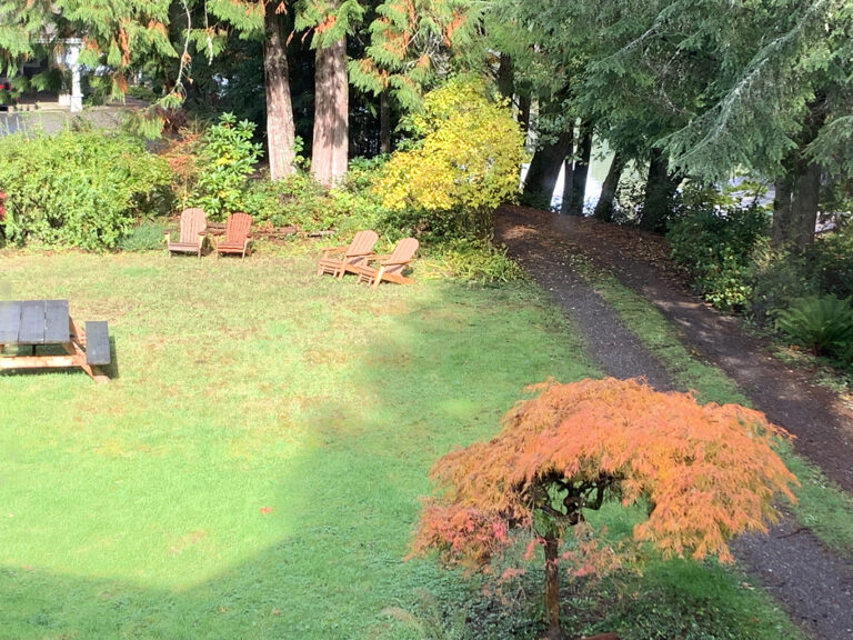 Big yard near the Cottage